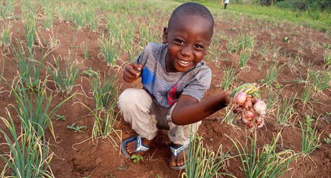 Child in garden at FICH in Uganda